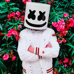 Marshmello Finds Love For Valentine's Day