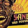 Sandrider w/ Wild Powwers & Pink Parts at Neumos 3/11